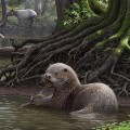 01 ancient otter