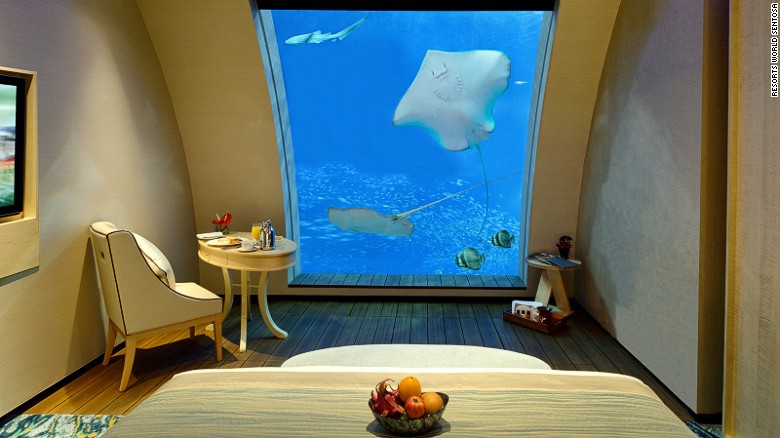 Beach Villas Ocean Suites: The best way to make friends with a ray.