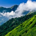 Beautiful India Nilgiri Hills