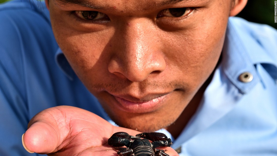 <strong>Worse than a tarantula?</strong> Guide Yin gets up close with a dead scorpion.