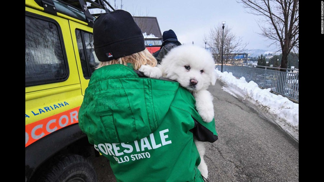 "Three puppies were dug out from the snow Monday, January 23, after <a href=""http://www.cnn.com/2017/01/26/europe/italy-avalanche-hotel/"" target=""_blank"">an avalanche covered Hotel Rigopiano</a> near Farindola, Italy. The avalanche came when a series of earthquakes hit central Italy on Wednesday, January 18. Eleven people at the hotel were rescued, but 29 were killed."
