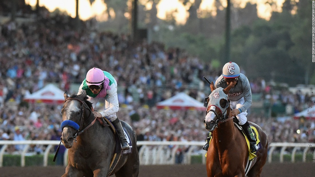 "Arrogate, ridden by Mike Smith, <a href=""http://edition.cnn.com/2016/11/06/sport/breeders-cup-classic-california-chrome/"">narrowly edged out</a> California Chrome (right) in November -- and the world's top two horses will again go head to head at Florida's Gulfstream Park for the $7 million first prize on Saturday."