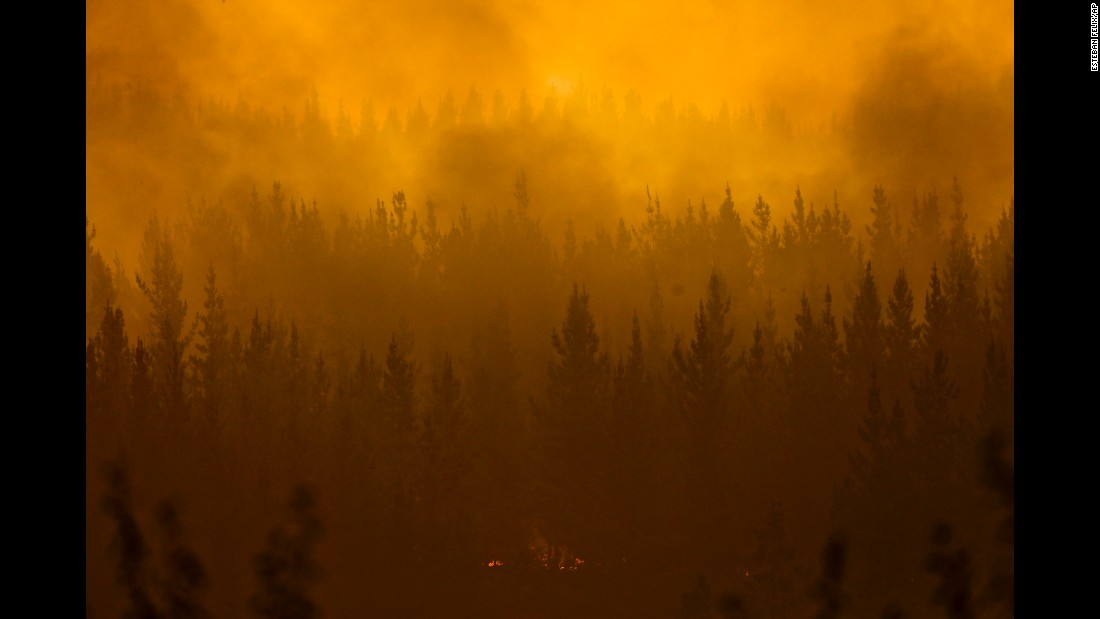 A forest fire burns in Pumanque, Chile, on Saturday, January 21.