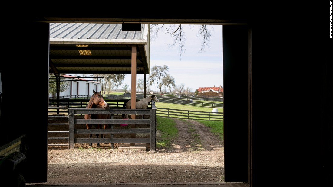 About 11 miles northeast of Brenham, the Inn at Dos Brisas provides rustic luxury to overnight guests. The resort is home to an impressive equestrian facility.