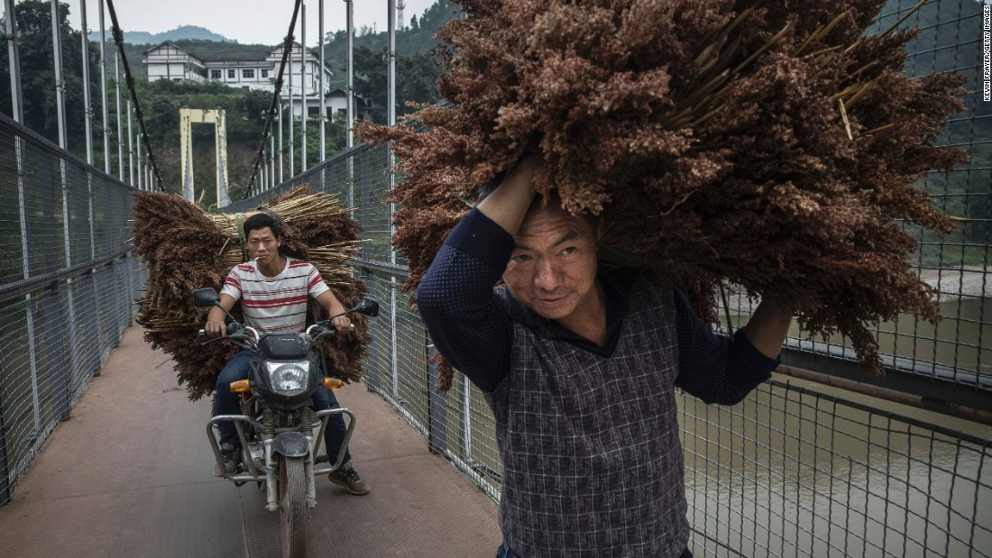 <strong>Maotai, China:</strong> Chinese farmers carry sorghum grain across a bridge in Maotai. Sitting along China's Chishui River in the southwestern province of Guizhou, the town produces over half of the country's baijiu.