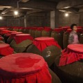 china moutai production-9