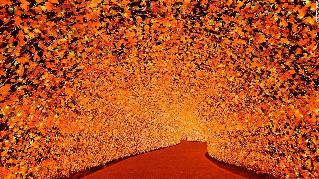 "<strong>What's not to like?: </strong>""We try to show the beauty of autumn 'momiji' leaves,"" says Yasuyo Otani, Nagashima Resort spokeswoman. ""It shows traditional Japanese beauty and it's hard to find anyone who dislikes momiji in Japan."""
