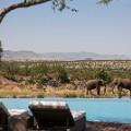 Valentines Day travel Four Seasons Safari Lodge Serengeti 1
