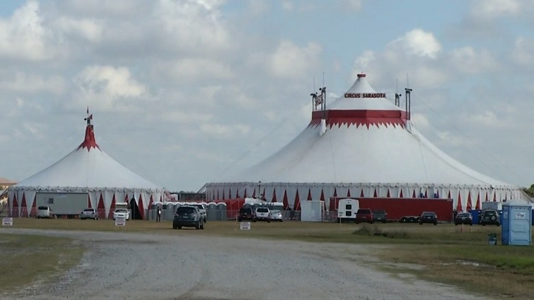 Five injured in circus high-wire fall