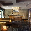 11-business-hotels-Reception