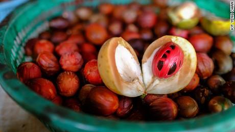 Ghee Hup Nutmeg Factory.