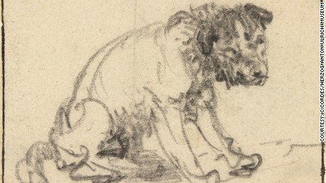 Rembrandt's drawing of a dog has been in the collection of the Herzog Anton Ulrich Museum in Braunschweig, Germany, since 1770 but was long thought to be the work of a different artist.