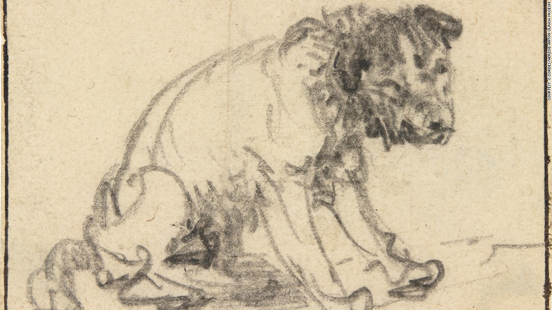Rembrandt's drawing of a dog has been in the collection of the Herzog Anton Ulrich Museum in Braunschweig, Germany, since 1770, but was long thought to be the work of a different artist.