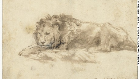 This drawing of a lion (1650-1959), belonging to the Rijksmuseum in Amsterdam, is one of the few surviving animal studies by Rembrandt van Rijn.