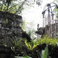 Las-Pozas-Mexico-photo-essay-photography-michael-wilkin 2
