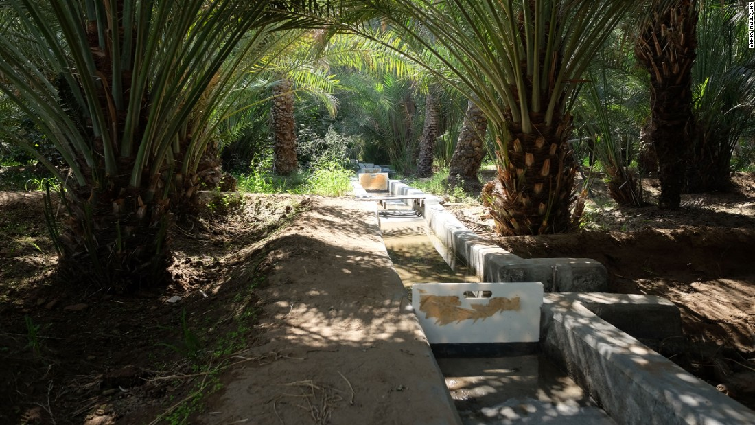 <strong>Oasis waterways: </strong>Gently sloping irrigation channels known as <em>falaj</em> are used to bring water from cisterns to thirsty palm trees.