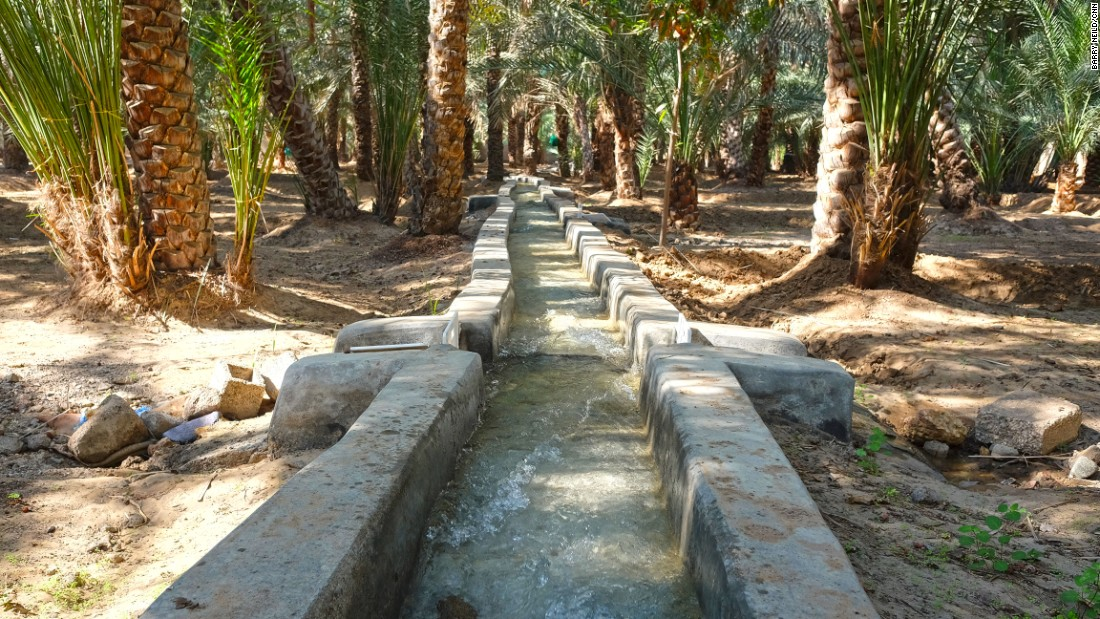 <strong>Babbling streams:</strong> Depending on whose turn it is to get the H2O, visitors may encounter water rushing through an otherwise quiet corner of the oasis.