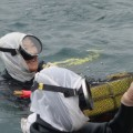 3. Ama divers Japan