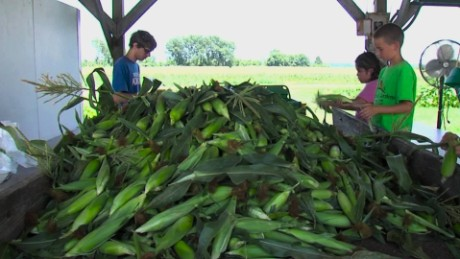 cnnee pkg sarmenti argentina quiere venderle maiz a mexico_00005712.jpg