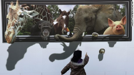 A girl reacts to a 3D drawing of animals on the safety wall at a construction site of the archery venue for the Tokyo 2020 Summer Olympics in Tokyo, Sunday, Feb. 19, 2017. (AP Photo/Shizuo Kambayashi)