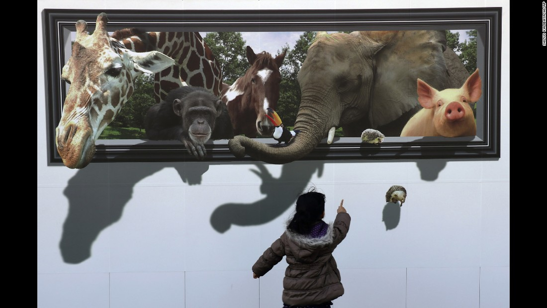 A girl in Tokyo looks at a 3-D drawing of animals that was on a construction site's safety wall on Sunday, February 19.