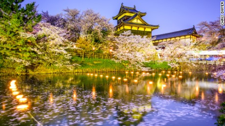 Nara Park features more than 1,500 cherry trees.