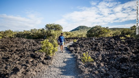 Visitors to Rangitoto can walk through fields of solidified lava.