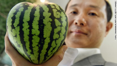This photo taken on July 1, 2015 shows senior managing director Mototaka Nishimura of the Shibuya Nishimura luxury fruit shop displaying a heart-shaped watermelon at the company's main store in Tokyo. Japanese consumers are used to paying through the nose for fruit, and now the summer's here there's another way for them to empty their wallets: cube and heart-shaped watermelons.       AFP PHOTO / Toru YAMANAKA        (Photo credit should read TORU YAMANAKA/AFP/Getty Images)