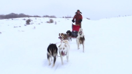 dog sledding colorado van dam pkg orig_00001912