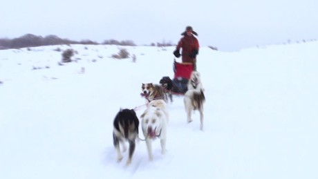 dog sledding colorado van dam pkg orig_00001912.jpg