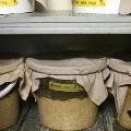 Noma influence Noma's fermentation room