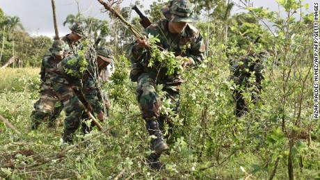 Soldiers of the joint task command destroy coca plantations in Chimore, Chapare, Bolivia on February 26, 2016, during the beginning of the works for the eradication of excess coca. AFP PHOTO/AIZAR RALDES / AFP / Aizar Raldes Nunez        (Photo credit should read AIZAR RALDES NUNEZ/AFP/Getty Images)