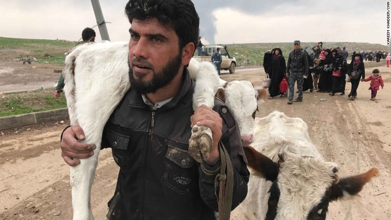 Saleh Jassim, seen above, braved ISIS snipers and mortar fire to get his family and his herd, his only livelihood, out of harms way in western Mosul.