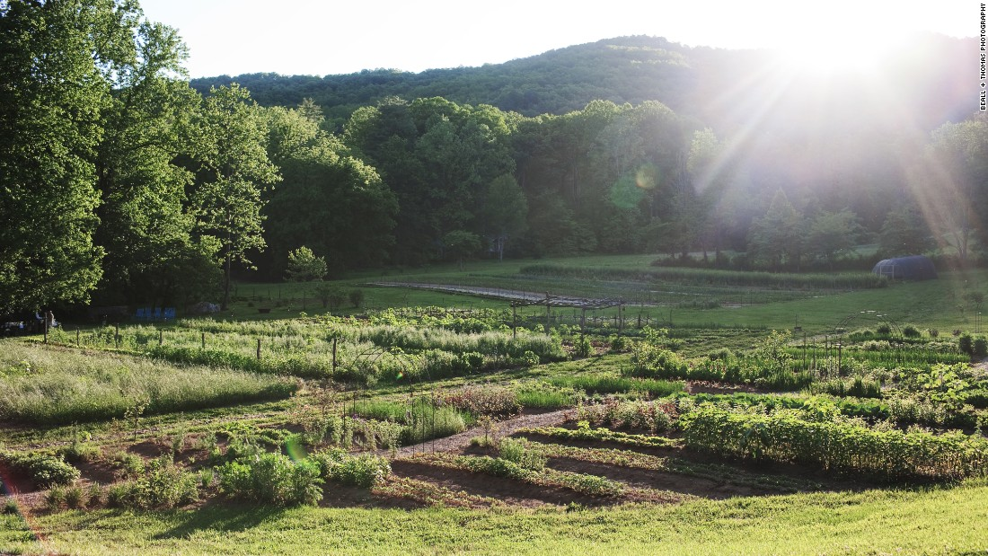 <strong>Blackberry Farm, Tennessee. </strong>Much of the food served at the James Beard Award-winning restaurant at this resort is grown at the farm. Guests can learn about traditional farming from master gardener John Coykendal, take a tasting tour of the farm or watch a cooking demonstration.