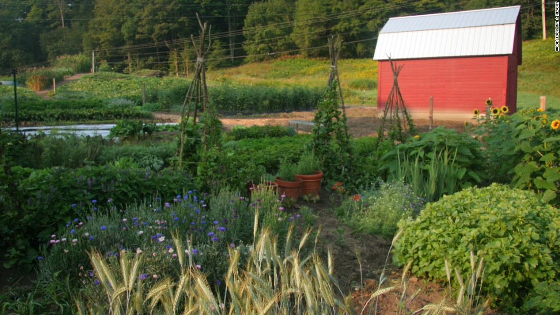 <strong>Woodstock Inn & Resort, Vermont. </strong>Master gardener Benjamin Pauly and executive chef Rhys Lewis work together to cultivate more than 200 varieties of vegetables at the resort's 2.5-acre Kelly Way Gardens. They also have a mushroom glen and newly planted fruit trees.