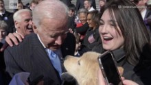 joe biden little biden dog_00004821.jpg