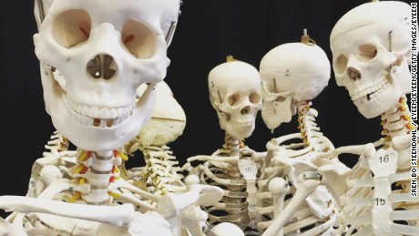 A stock photo of anatomical skeletons. Prior to a 1985 ban, India was one of the world's leading exporters of human remains.