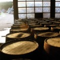 whisky barrel 3