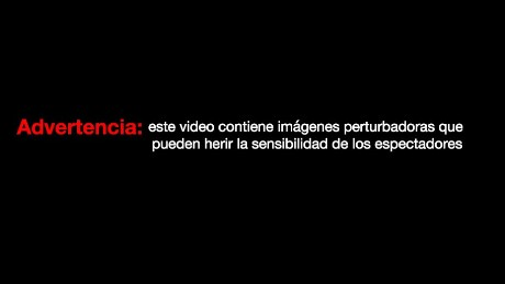 cnnee advertencia de video con imagenes perturbadoras