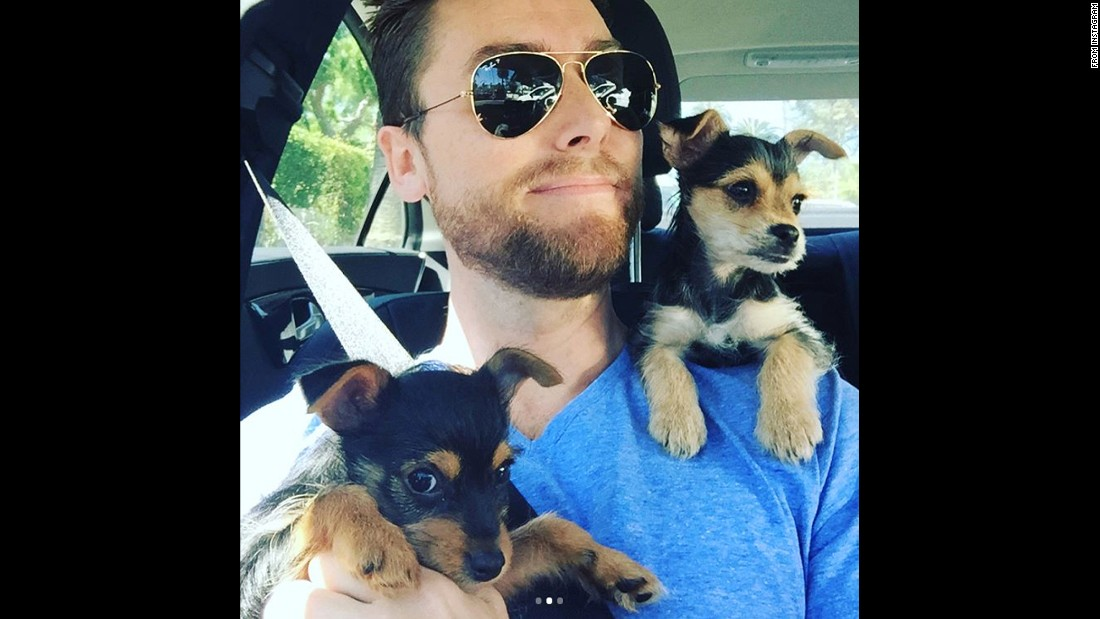"Singer Lance Bass snaps a selfie with his puppies on Thursday, March 9. ""These pups just get cuter every day,"" <a href=""https://www.instagram.com/p/BRb5-m3Fc6J/"" target=""_blank"">he said on Instagram.</a>"