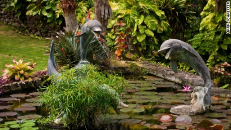 Tropical plants and sculpture intermingle in the Botanical Gardens of Nevis.
