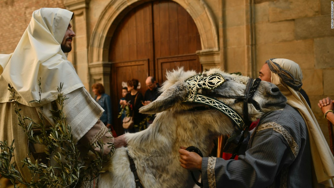 A donkey rests his head on a man's shoulder during a Palm Sunday procession in Pamplona, Spain.