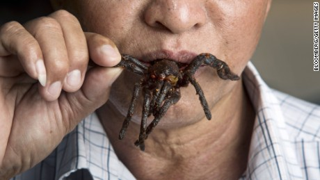 A man eats a fried tarantula at a market in Skuon, known as Spider Town, in Kampong Cham province, Cambodia, on Saturday, Sept. 17, 2016. Around the small market town of Skuon in Cambodia, men and boys as young as five head into the jungle to hunt for an unusual prey - the Thai Zebra tarantula. For generations, locals have dug the palm-sized spiders from their burrows for use as a traditional cure for breathing disorders and backache. Photographer: Brent Lewin/Bloomberg via Getty Images