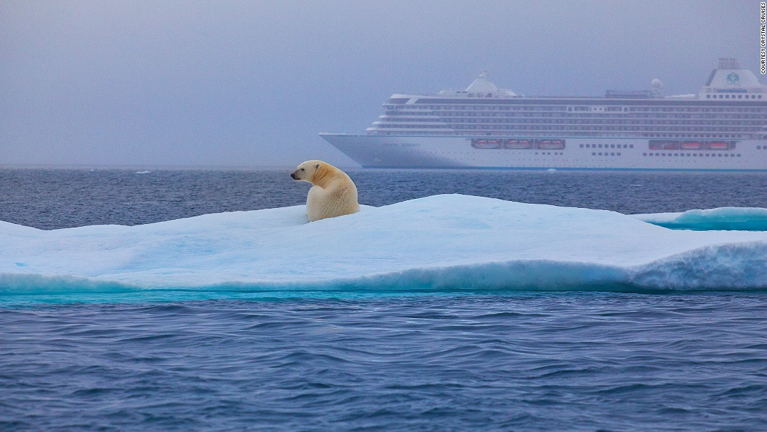 <strong>Crystal Cruises:</strong> For the best views of wildlife, switch from the ship to a Zodiac boat or helicopter.