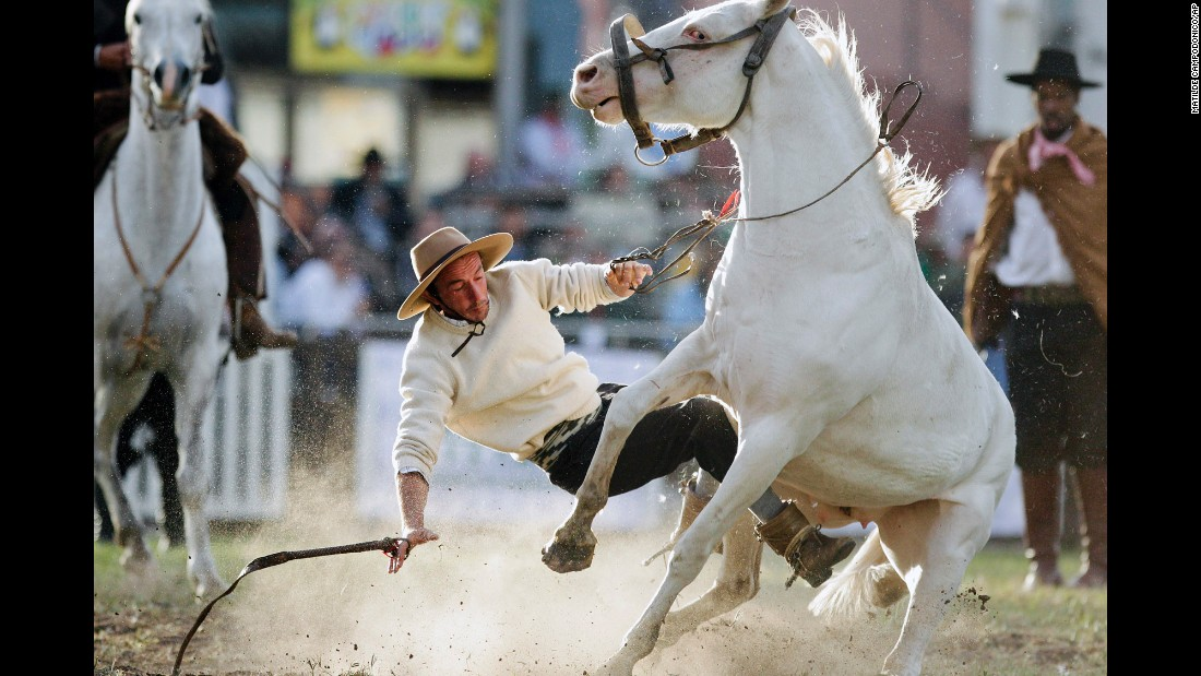 A South American cowboy, known as a gaucho, is thrown off a wild horse during the Criolla del Prado rodeo in Montevideo, Uruguay, on Wednesday, April 12. During Creole week, the city of Montevideo organizes the event to reward the best horse riders.