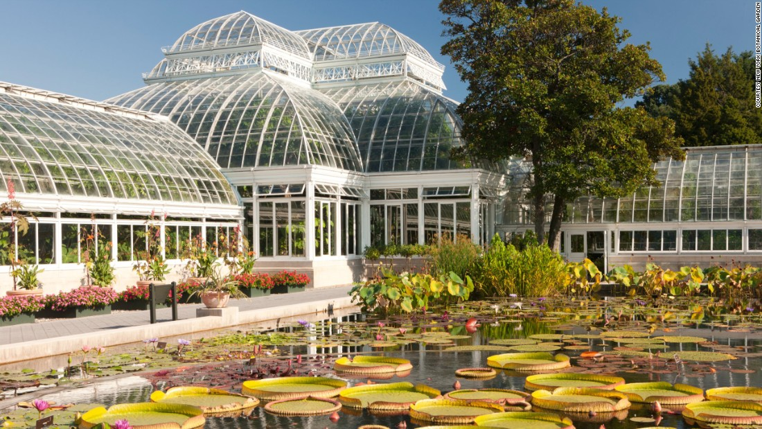 <strong>New York Botanical Garden:</strong> Up in the Bronx, this botanical garden also has glass houses that will take you to tropical weather even in coldest winter.