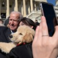 01 joe biden dog 0322