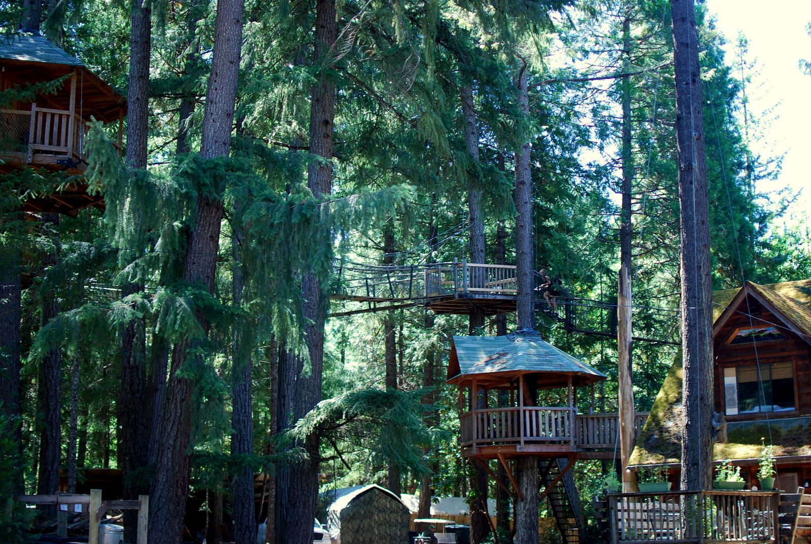 Exotic Tree Houses 17 Weird And Wacky Hotels Across America Cnn Travel