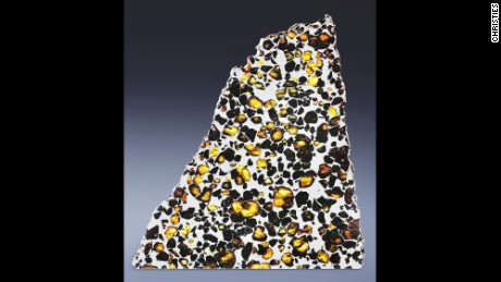 A large partial slice of Esquel pallasite discovered in Argentina