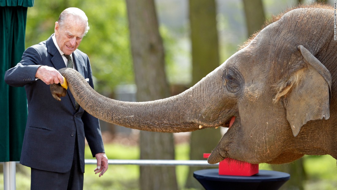 Prince Philip feeds a banana to an elephant in Dunstable, England, in April.